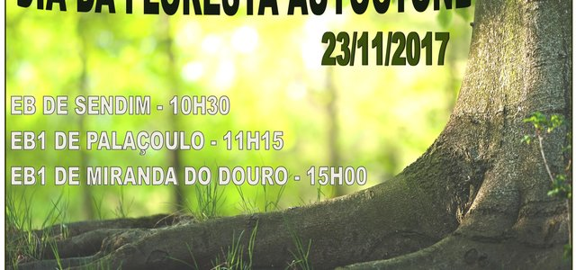 Cartaz 2017 floresta 1 640 300